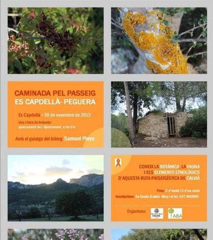 Cartel de la actividad organizada por la OCB Calvià