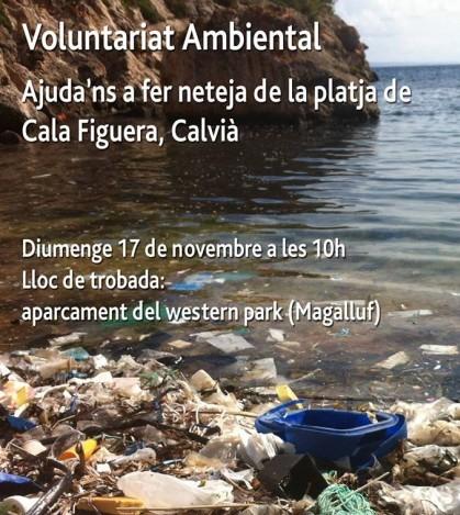 Jornada de voluntariado ambiental para limpiar la playa de Cala Figuera de Calvià.